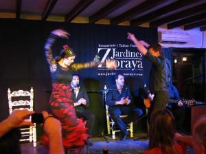 flamenco-en-vivo-jardines-2
